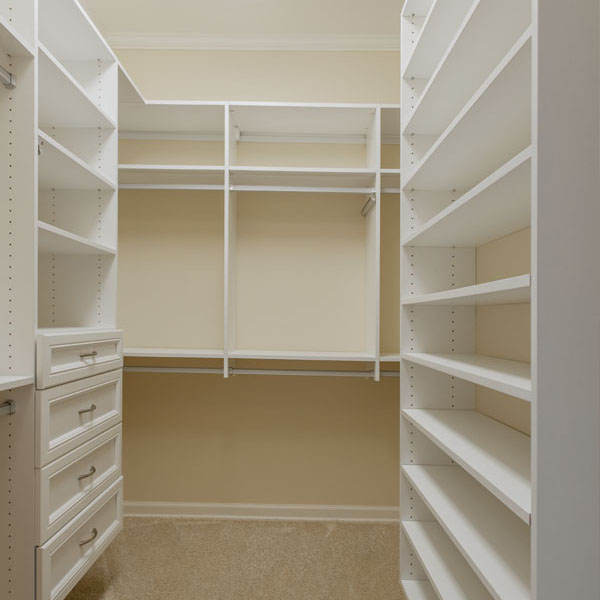 Hynsdale walk-in closet photo